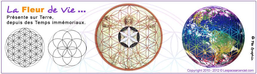 Forum orandia si la terre avait son drapeau il ressemblerait a a - Signification arbre de vie ...